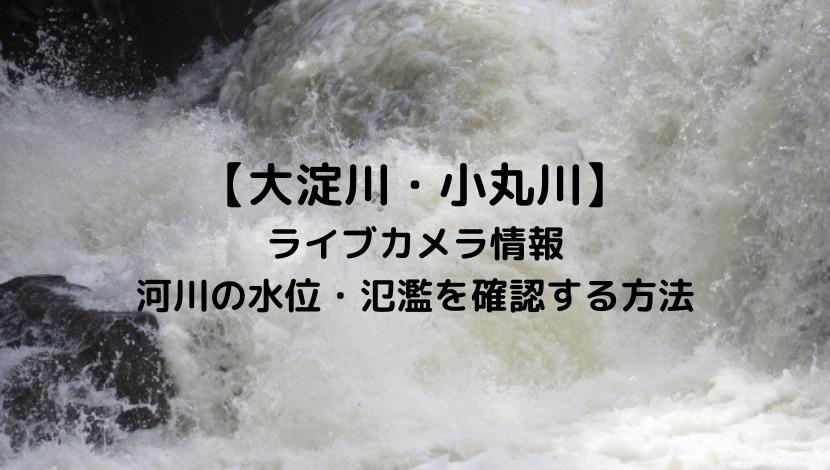 大淀川・小丸川(宮崎)のライブカメラと現在の水位や氾濫場所&状況を確認する方法!