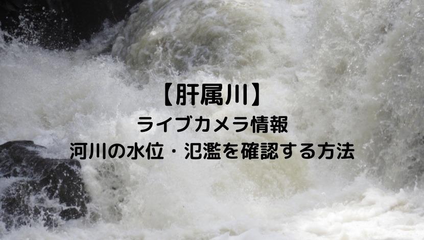 肝属川のライブカメラと現在の水位や氾濫場所&状況を確認する方法!