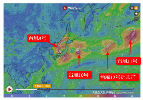 台風12号2021たまご